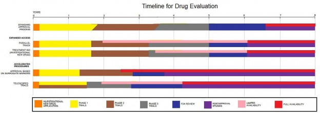 Drug Evaluation Timeline